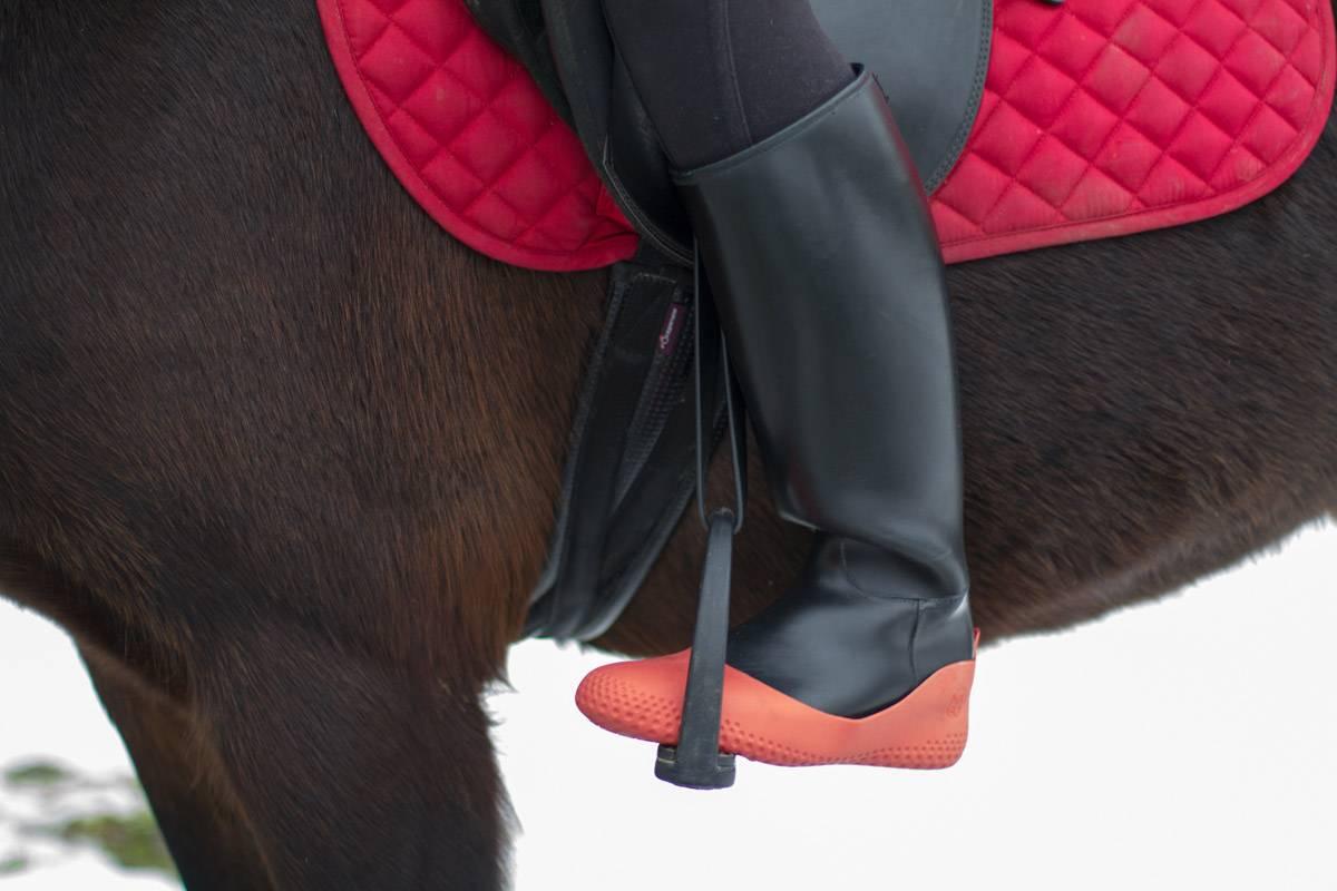 Sur botte cheval La mouillère