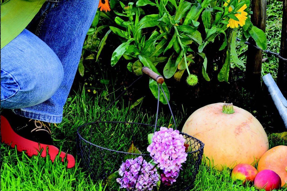 Couvre chaussures pour le jardin la Mouillère